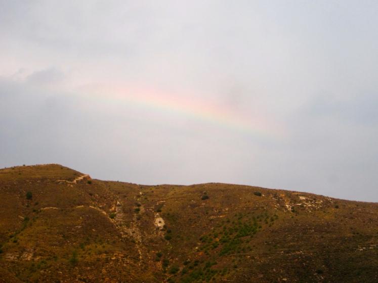 竟瞥見雨後彩虹,算是個完美句點