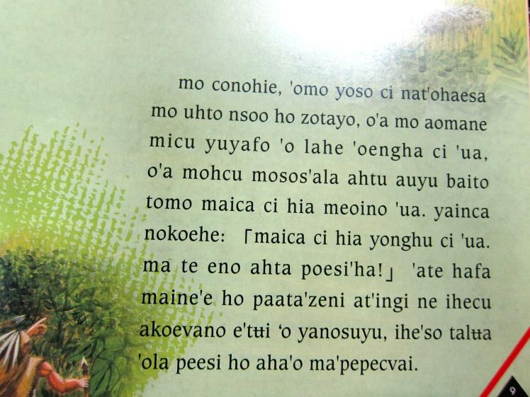 鄒語長這樣